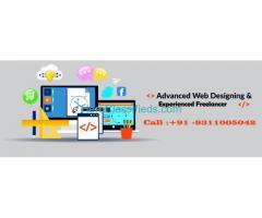 Freelance Website Designer in Delhi India