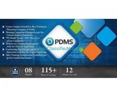 PDMS Training in Gurgaon