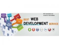 freelance website designer in delhi