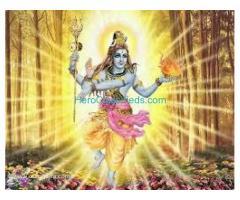 Vashikaran Specialist Baba ji Astrologer +91-9829697205 Mumbai