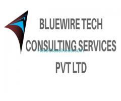 Bluewire Tech Human Resource service