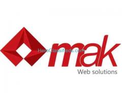 Get beautiful professional website
