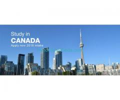 Study in Canada to work while studying