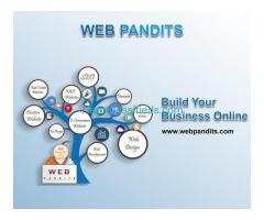 Website Design & Development Company in Delhi/NCR - WebPandits