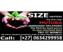 mutuba seed classifieds and penis enlargement +27634299958