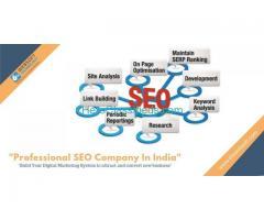 Professional SEO Company In India
