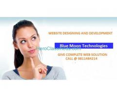 Website Designing Company in Delhi For Customized Solutions