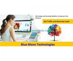 Web Designing Company in Delhi | Basic Website Package @ Rs.5,000