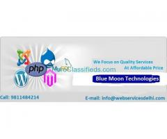 Website Services Delhi | Special Website Offer @ Rs 2,999