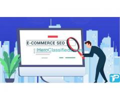 ROI based Ecommerce SEO Services in India