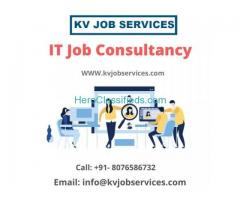 IT Job Consultancy in Delhi