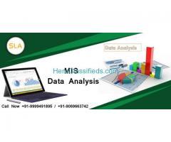 Attend MIS Training Course in Delhi at SLA Consultants India