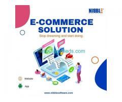 Best e-commerce website development company in Delhi NCR
