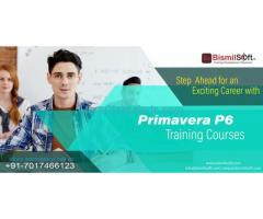Primavera P6 Course in Noida