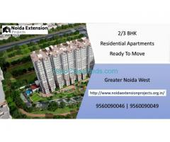 2,3 BHK Flats in Noida Extension | 9560090046