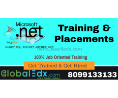 GlobalEdx launching Train & Hire Program for DOT NET