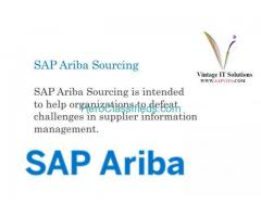 What are SAP ARIBA interview questions?