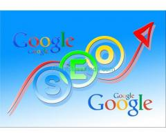 Search Engine Optimization Services in Jaipur Rajasthan
