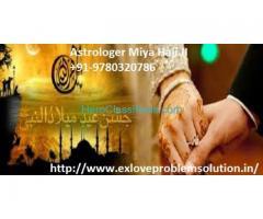 Husband wife Love Problem Solution Astrologer Miya haj ji  in Delhi +91-9780320786